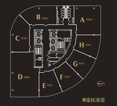 鸿隆世纪广场B座户型