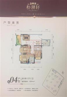 东逸湾松湖轩16栋04户型