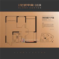 金地龙城中央从容寓3栋B座01户型