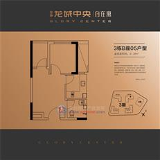 金地龙城中央从容寓3栋B座05户型