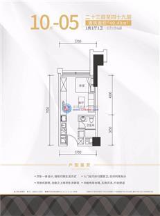 远洋新天地广场10栋05户型(23-49层)