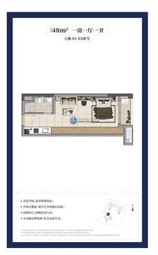 龙湖春江天玺公寓C座01/02/03户型